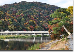 Arashiyama_pic