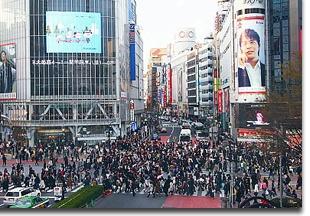 Shibuya_pic