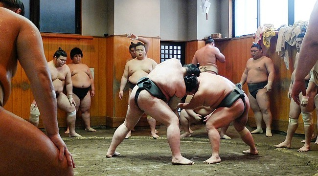 Morning practice at a sumo stable